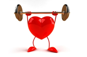heart_weights